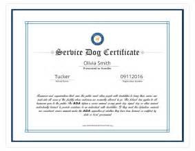 service certificate template certificate of template regional trainer sle
