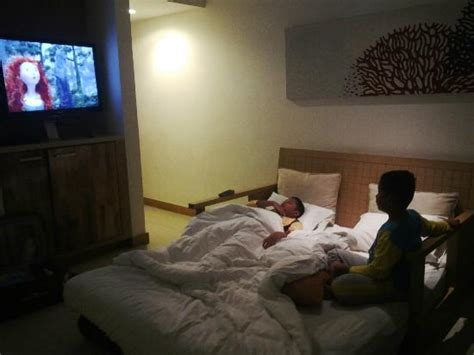 watching tv in bed the wind is so hard picture of holiday inn resort baruna