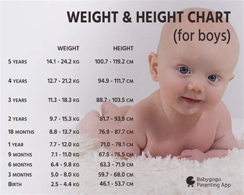 1 year baby weight what is the ideal height and weight of three months baby boy