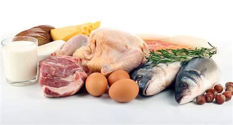 proteine nell alimentazione le proteine guida nutrizionale vicodellaforma