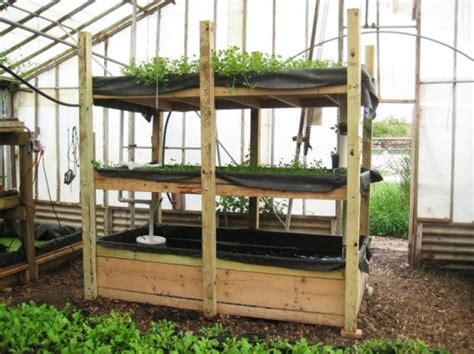 Backyard Aquaponics System by Diy Everything You Need To To Build A Simple