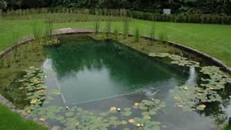 Backyard Pools And Construction Diy Swimming Pool Construction Backyard Design Ideas