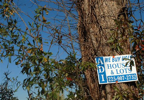 we buy houses signs who s behind the quot we buy houses quot signs