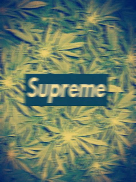Cannabis Light Drink Supreme Gif Find Amp Share On Giphy