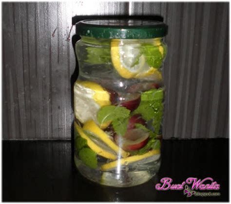 Air Detox Infused Water by Experiment Buat Air Detox Buah Fruit Infused Water Buat