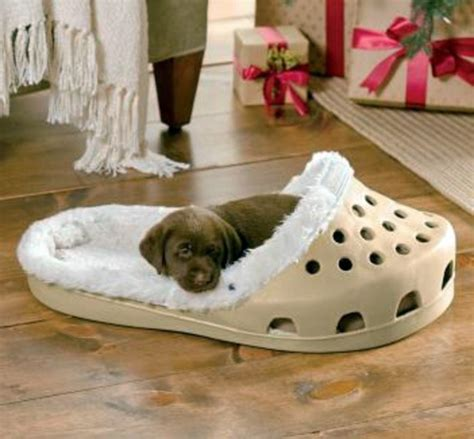 cool bed for dogs cool dog bed in shape of a shoe interior design ideas