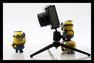 minion photography 2 thamer 08 flickr
