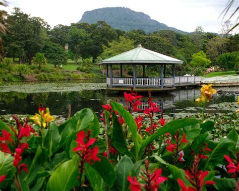 Botanical Garden Wollongong Wollongong Botanic Gardens