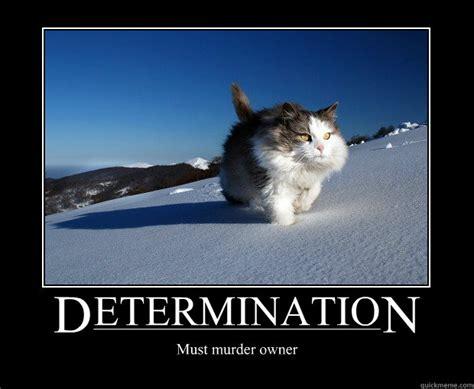Motivational Memes Funny - determination memes