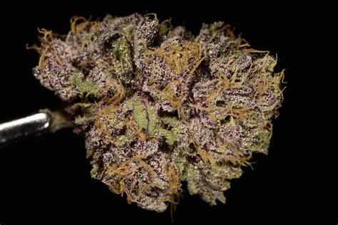Halloween Table Runners Best Of 2014 The Top 10 Strains I Smoked This Year