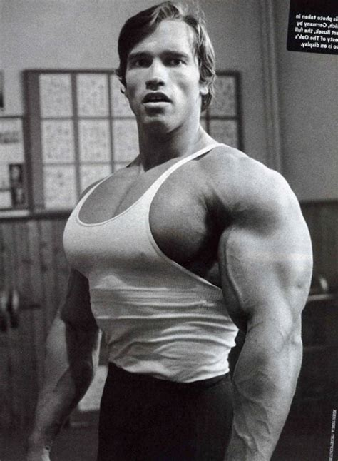 What Was Arnold Schwarzenegger S Best Bench Press Ordinary Arnold Schwarzenegger Max