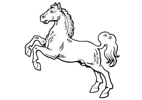 imagenes para colorear un caballo dibujo para colorear caballo img 19310