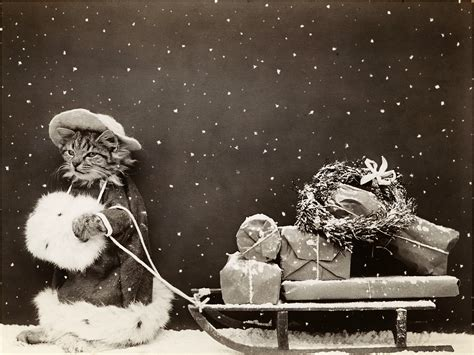 old vintage images super cute vintage christmas kitty photo the graphics fairy