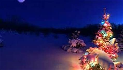 Bing Images As Wallpaper Christmas | christmas backgrounds bing images food pinterest