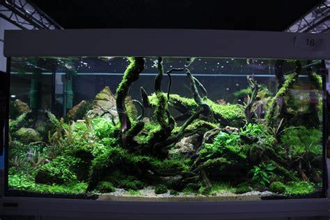 ? Aquascaping, Naturaquarium und Aquariengestaltung