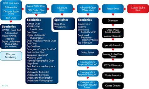 official padi course progression chart central coast