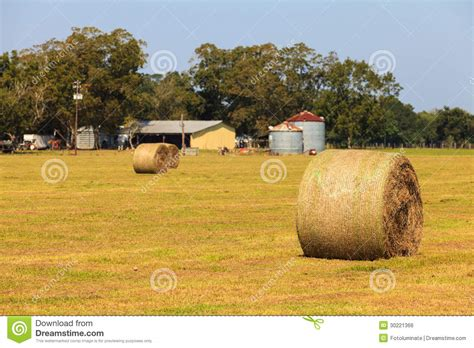 farm royalty free stock image image 30221366