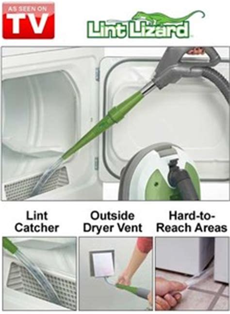 how to remove lizard from room lint lizard drleonards