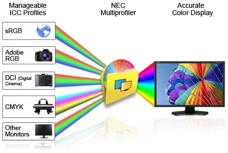 color management color management nec display solutions of america