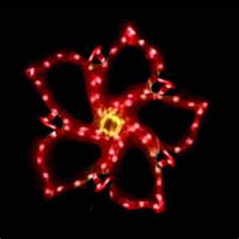 clear poinsetta holiday flower xmas lights pointsettia flower