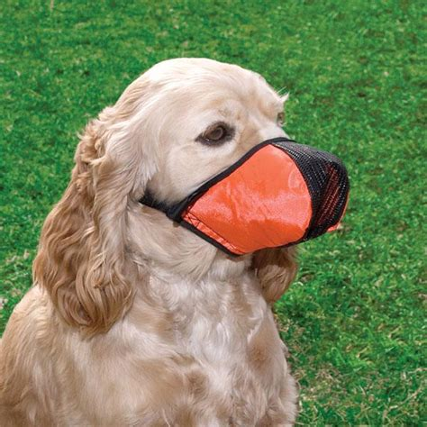 medium sized guard dogs pro guard softie muzzle for dogs size medium ebay