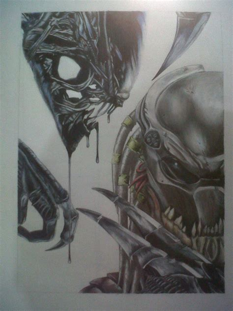 Avp Drawing