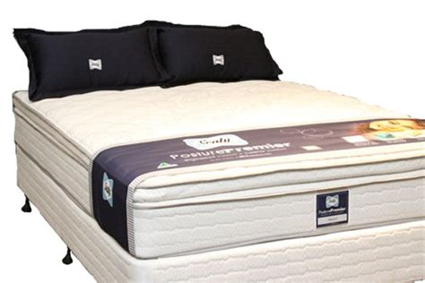 Sealy Slat Mattress by Sealy Posturepremier Single Back Support Best In Beds