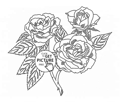 realistic rose coloring page realistic roses coloring page for kids flower coloring