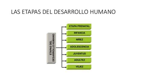 etapas del desarrollo 8425428602 desarrollo humano pdf
