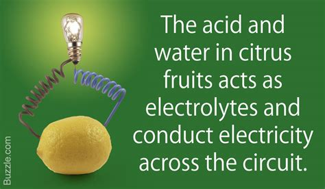 fruit electricity why do citrus fruits conduct electricity the surprising