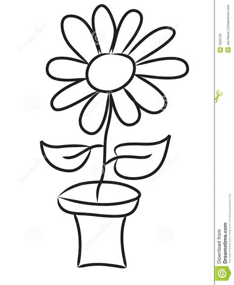 Hand Draw Flowers Stock Photos Image 7935133 Simple Flower Pot Draw Color It