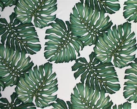 banana palm wallpaper palm pattern banana palm for art from scratch