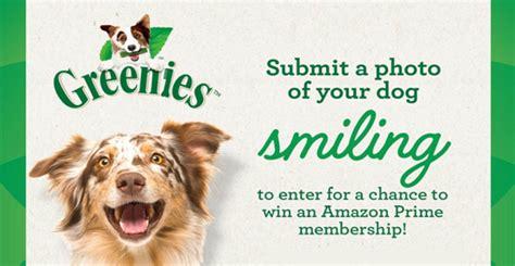 Amazon Prime Daily Giveaway - greenies amazon prime membership giveaway