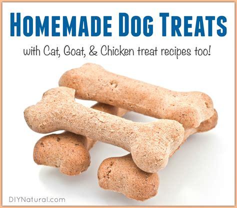treats recipes treats cat treats and more