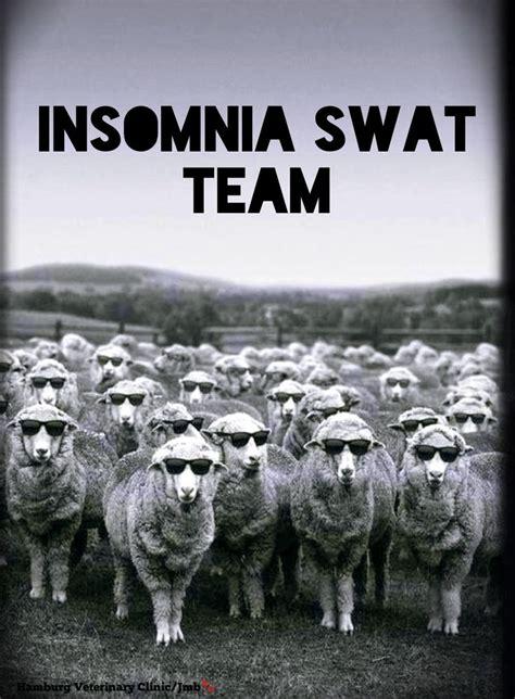 Team No Sleep Meme - 17 best ideas about good night funny on pinterest funny