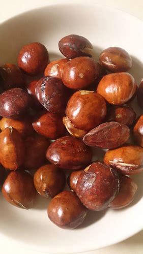 Rendang Jengkol 500g rendang jengkol ジェンコル豆のココナッツミルク煮 パダン料理 dunia