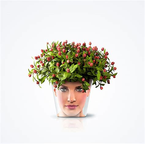 flower pots with faces on them funny and creative flower pots by good bored panda