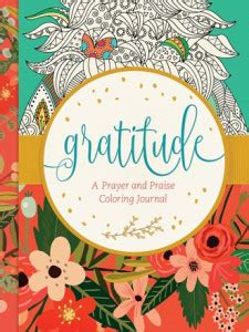 gratitude journal she believed so she became books britt reads fiction reviews and giveaways for christian