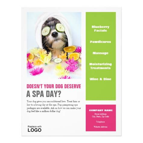 dog grooming flyer spa zazzle