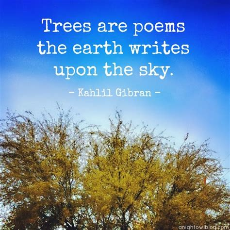 tree quotes 60 best tree quotes sayings