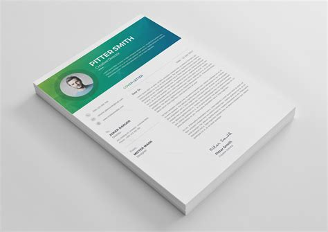 premium resume templates hera premium professional resume template 001269