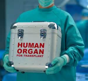 Best Liver Transplant Hospitals In Usa » Home Design 2017