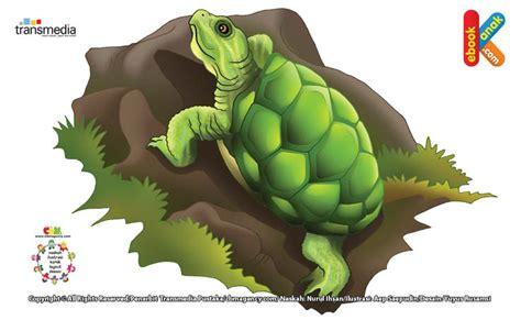Buku Seri Mengenal Hewan Kura Kura kura kura brazil bisa menyimpan spermanya ebook anak