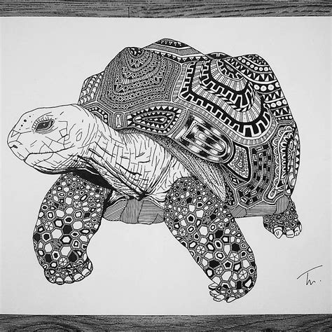 imagenes en blanco y negro para estar sorprendentes ilustraciones en blanco y negro de animales