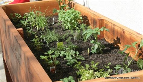 herb garden planter box vegetable planter box turned herb garden julie writes in