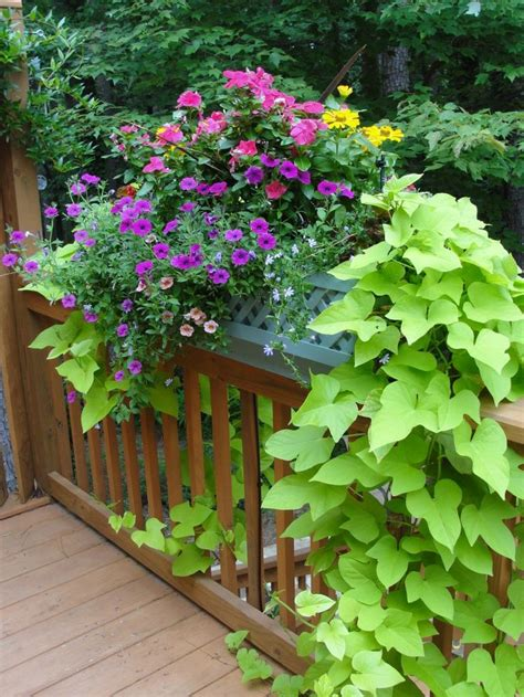 deck railing planter box outdoor spaces pinterest