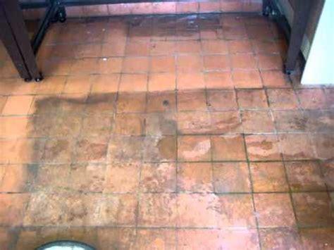 Bathroom Feature Tiles Ideas Terracotta Floor Tile Cleaning Youtube