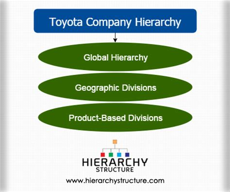 toyota company details toyota company hierarchy toyota s organizational structure