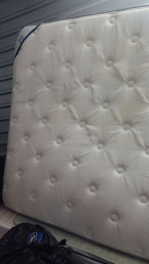 Sealy Blossom Mattress by Sealy Posturepedic Orange Blossom Pillow Top