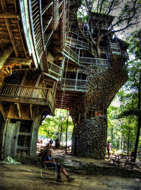 coolest treehouses world of mysteries best treehouse ever